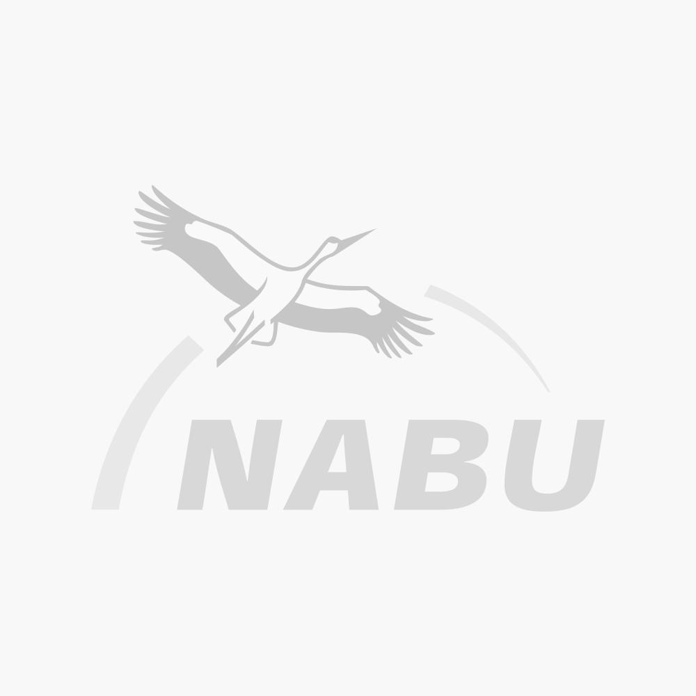 """Baumwolltragetasche """"Recyclingkönigin"""" mit langen Trägern, naturfarben, bio & fair, 2-seitig bedruckt mit NABU-Logo"""