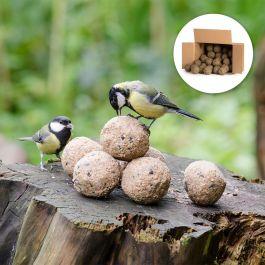 Insekten-Meisenknödel im Karton, 50 Stück