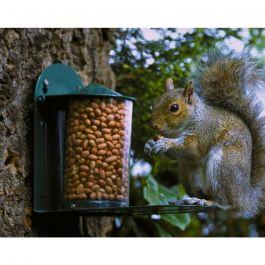 Futterautomat für Eichhörnchen