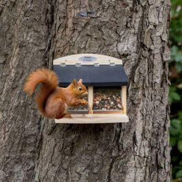 Eichhörnchenfutterautomat Galiano