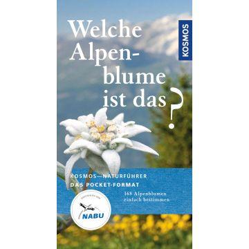 Welche Alpenblume ist das?