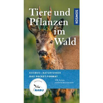 Tiere und Pflanzen im Wald