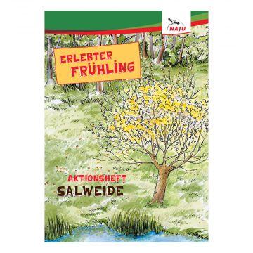 Erlebter Frühling - Aktionsheft Salweide