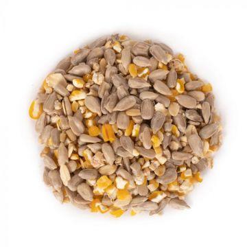 Green+ Samen Plus 2,5kg (biologischer Anbau)