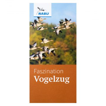 Faszination Vogel
