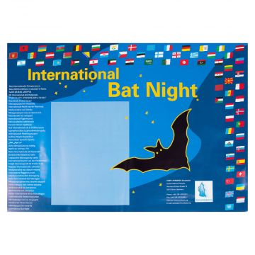 Batnight Poster A3
