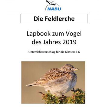 Lapbook zum Vogel des Jahres 2019 - Unterrichtsvorschlag für die Klassen 4-6 (Download)