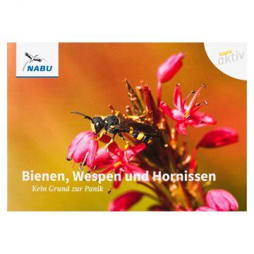 Reihe NABU aktiv Bienen