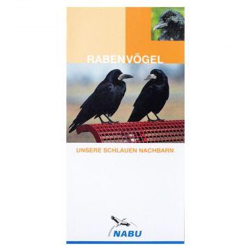 Rabenvögel. Unsere schlauen Nachbarn