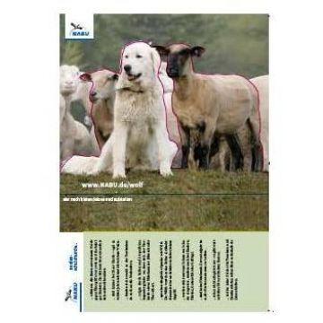 Tischaufsteller Herdenschutzhund