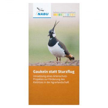Gaukeln statt Sturzflug. Umsetzung eines Artenschutz-Projektes zur Förderung des Kiebitzes in der Agrarlandschaft