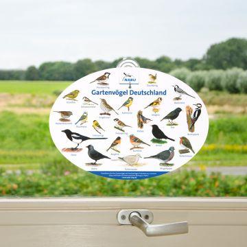 Fensterposter Gartenvögel