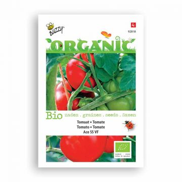 Tomaten Ace 55 VF (BIO)
