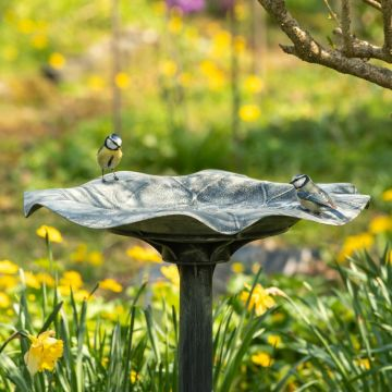 Vogeltränke Silbersee