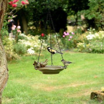 Vogeltränke Traunsee