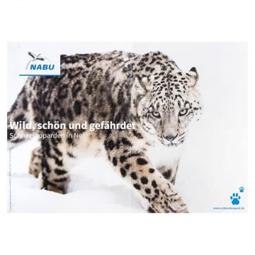 Schneeleoparden-Poster