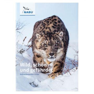 Wild, schön und gefährdet - Schneeleoparden in Not