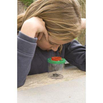 Insekten-Lupenbecher Darwin