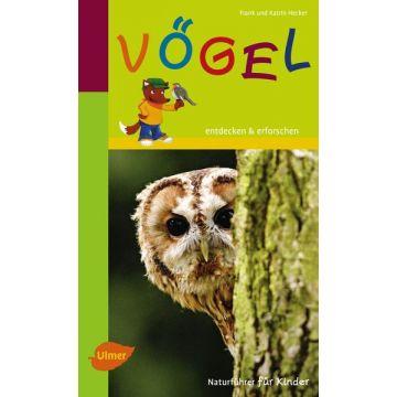Vögel: Entdecken und erforschen - Naturführer für Kinder