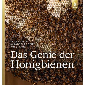 Das Genie der Honigbienen