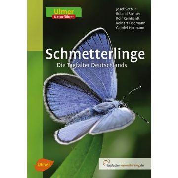 Schmetterlinge Die Tagfalter Deutschlands