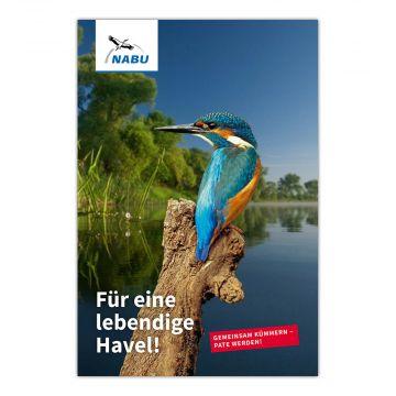 Für eine lebendige Havel - Havelpatenschaft