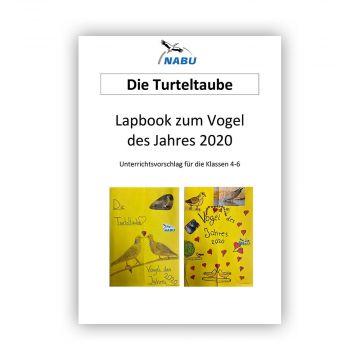Lapbook zum Vogel des Jahres 2020 - Unterrichtsvorschlag für die Klassen 4-6