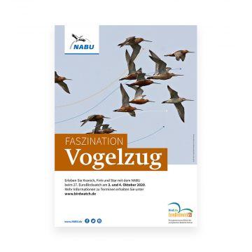 Faszination Vogelzug - Birdwatch 2020
