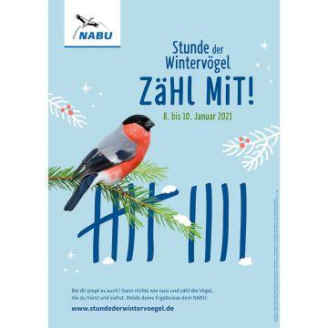 Poster Stunde der Wintervögel 2021- Zähl mit!