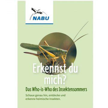 Leporello Insekten - Das Who-is-Who des Insektensommers