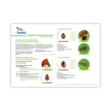 Zählhilfe Juli/Aug Insektensommer 2020