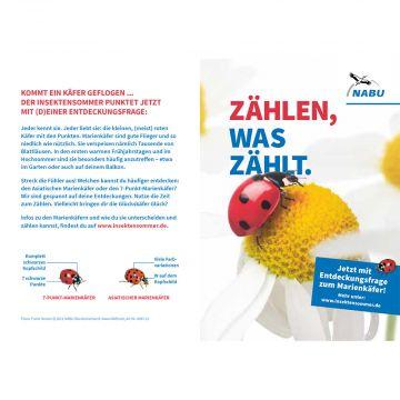 Postkarte Marienkäfer - Insektensommer 2021