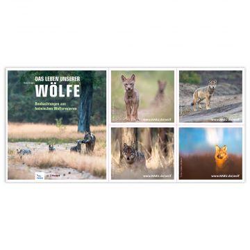 "Din-Lang-Aufkleber-Postkarte ""Das Leben unserer Wölfe"""