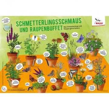 Schmetterlingsschmaus und Raupenbuffet (Poster)