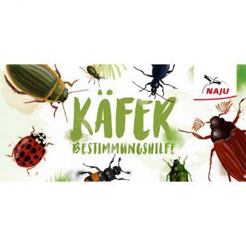 Käferbestimmungshilfe