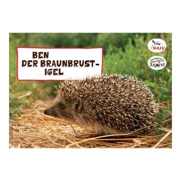 Erlebter Frühling: Steckbriefkarte Braunbrust-Igel