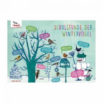 Schulstunde der Wintervögel: Poster