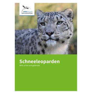 Schneeleoparden (NABU International Naturschutzstiftung)
