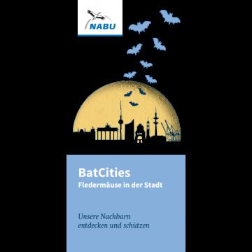 BatCities - Fledermäuse in der Stadt