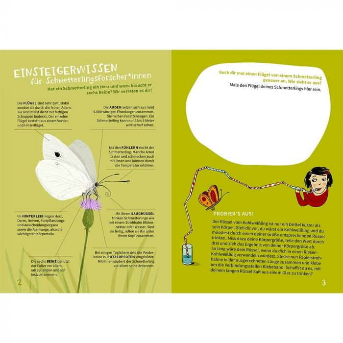NAJUversum: Schmetterlinge