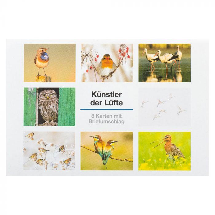 Postkartenset Künstler der Lüfte
