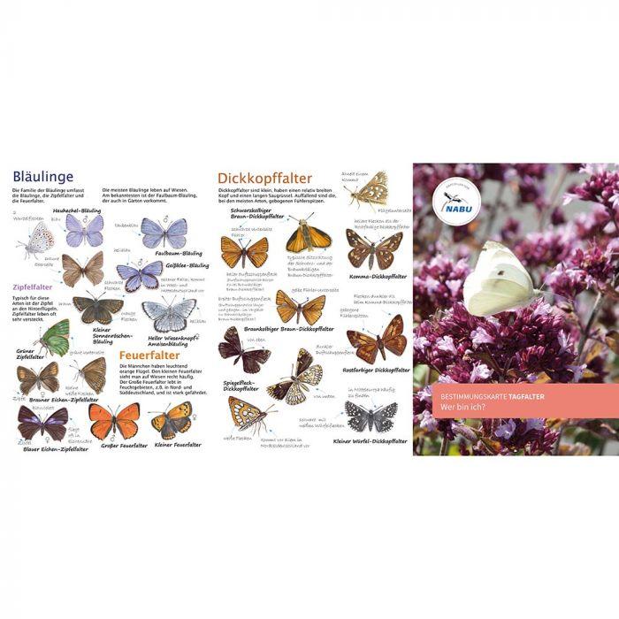 NABU-Schmetterlingskarte