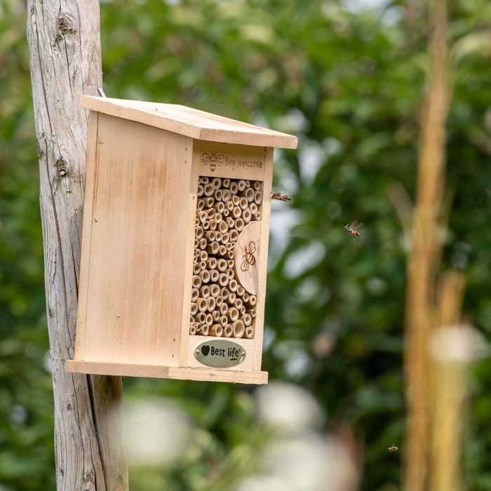 Wildbienenhotel Fernandina