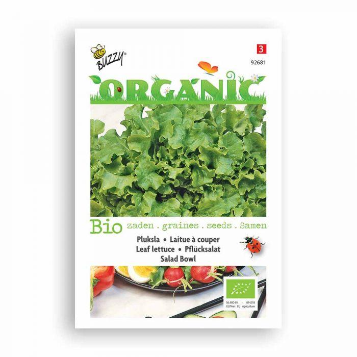 Pflücksalat Bowl grün (BIO)