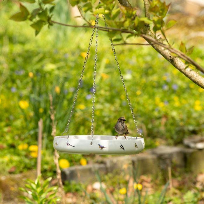 Vogeltränke Gartenvögel