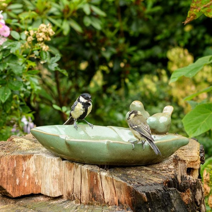 Vogeltränke Almsee