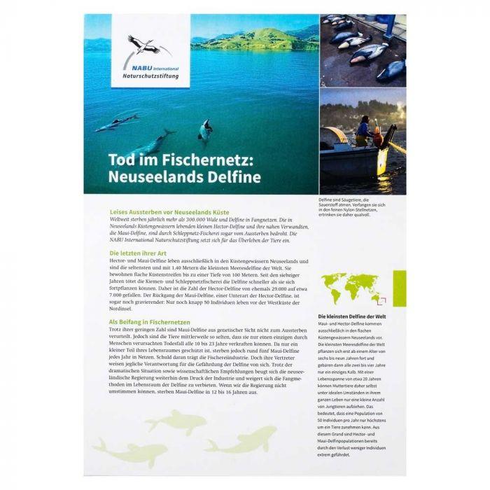 Tod im Fischernetz: Neuseelands Delfine