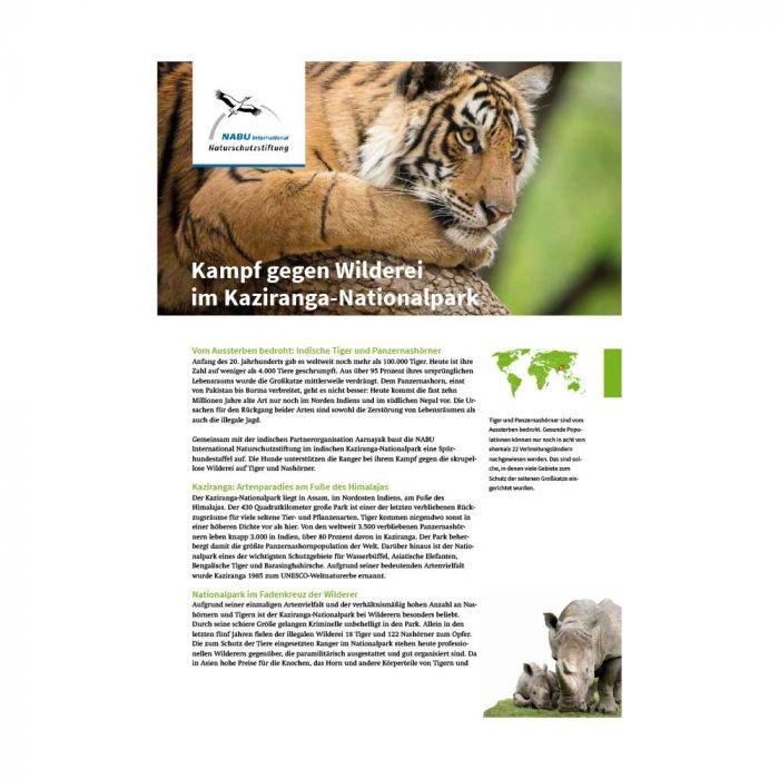 Kampf gegen Wilderei im Kaziranga-Nationalpark