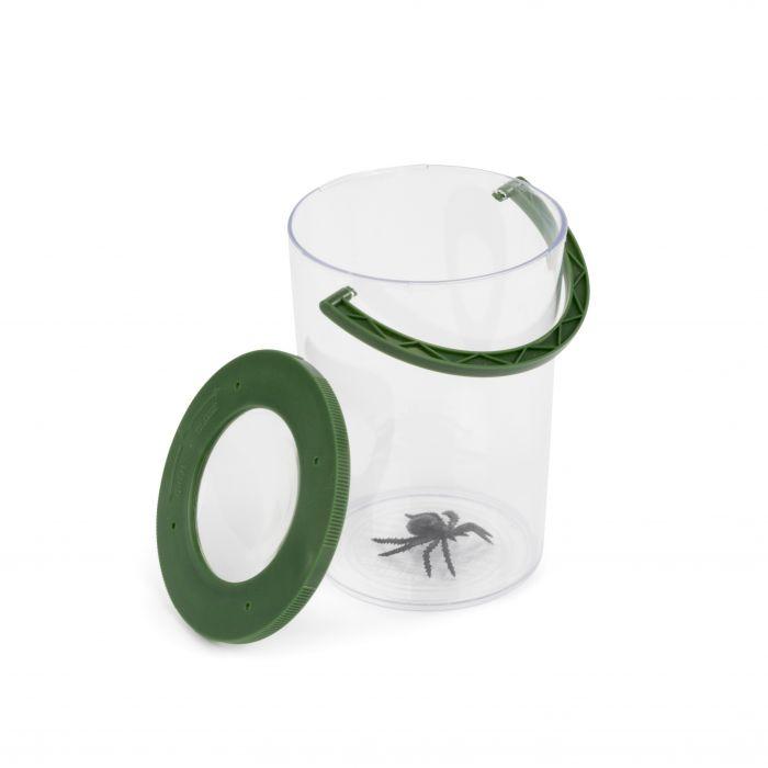 Insekten-Lupenbecher Wallace