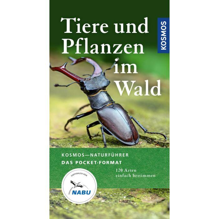 Tiere und Pflanzen im Wald - 120 Arten einfach bestimmen